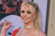 Britney Spears to Address Court at Next Conservatorship Hearing