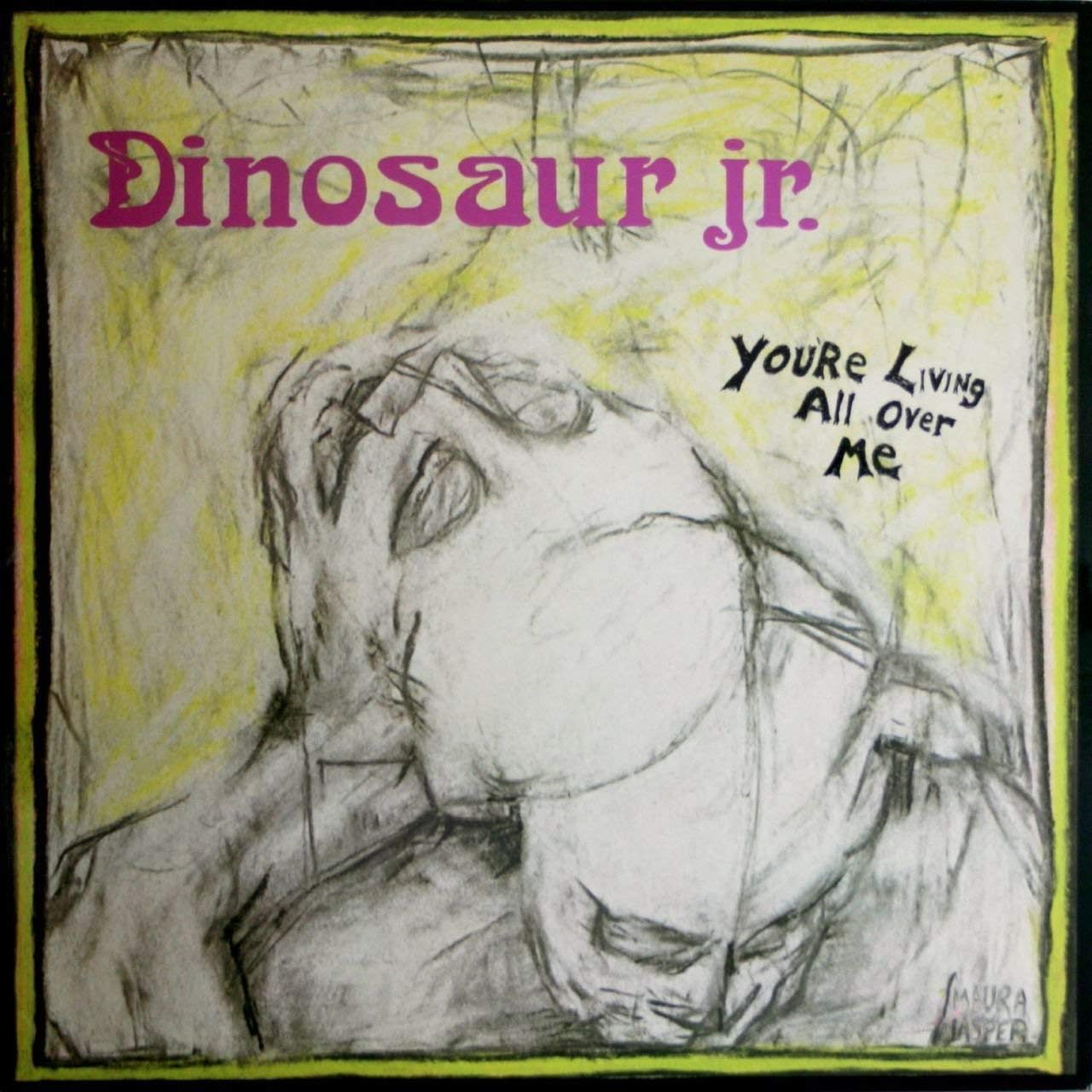 Dinosaur Jr You're Living All Over Me cover