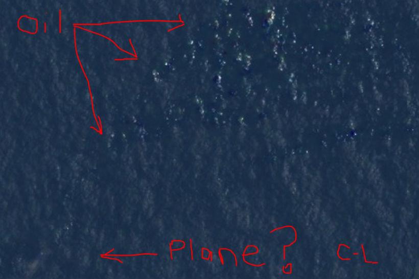 Courtney Love Malaysia Flight 370