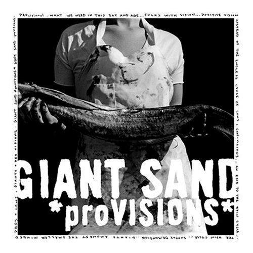 Giant Sand, 'proVisions' (Yep Roc)