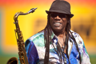 E Street Band's Clarence Clemons Suffers Stroke