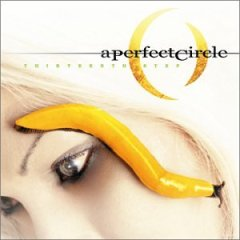 A Perfect Circle, 'Thirteenth Step' (Virgin)