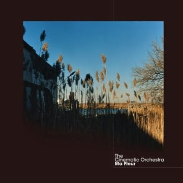The Cinematic Orchestra, 'Ma Fleur' (Domino)