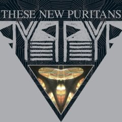 These New Puritans, 'Beat Pyramid' (Domino)