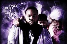 Raekwon, 'Only Built 4 Cuban Linx II' (EMI)