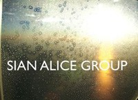 Sian Alice Group, 'Troubled, Shaken, Etc.' (Social Registry)