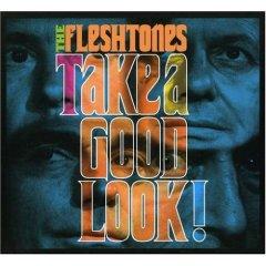The Fleshtones, 'Take a Good Look' (Yep Rock)