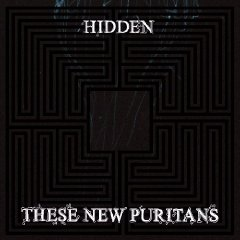 These New Puritans, 'Hidden' (Domino)