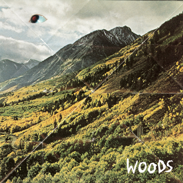 Woods, 'Songs of Shame' (Shrimper/Woodsist)