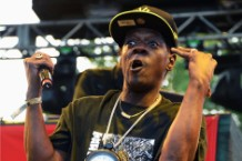 Flavor Flav fried chicken ribs closes