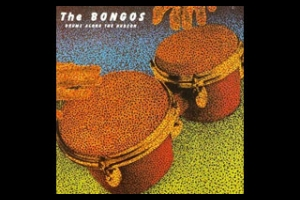 Drums Along the Hudson album cover, Maxwell's, The Bongos