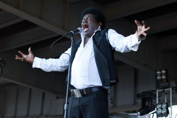 Charles Bradley / Photo by Rebecca Smeyne