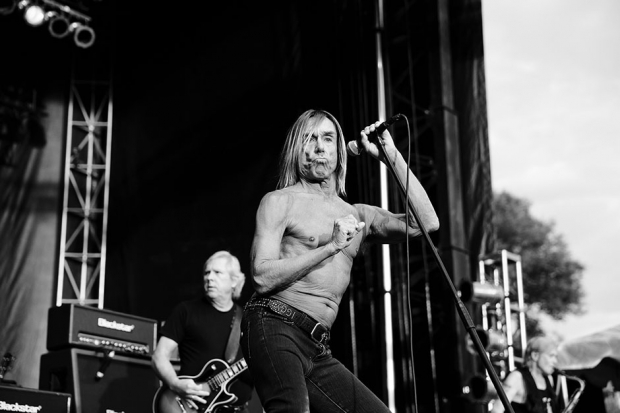 Iggy Pop at Riot Fest, Toronto, August 25, 2013 / Photo by  Jess Baumung