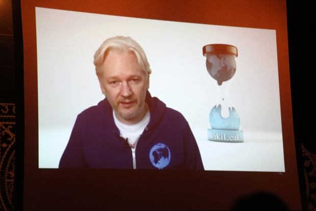 Julian Assange opens for M.I.A. / Photo by Getty Images