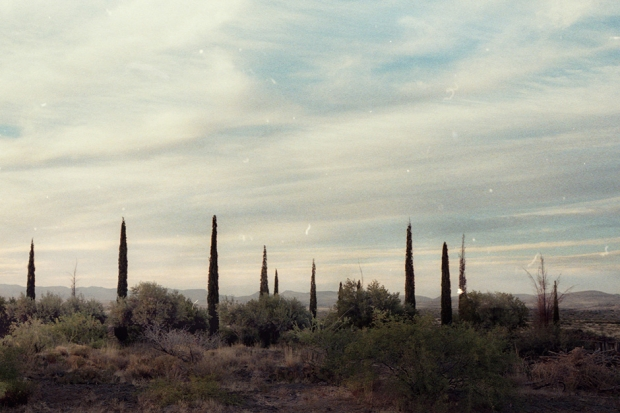 The desert landscape of Arcosanti